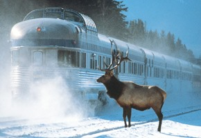 Canada Winter Tours