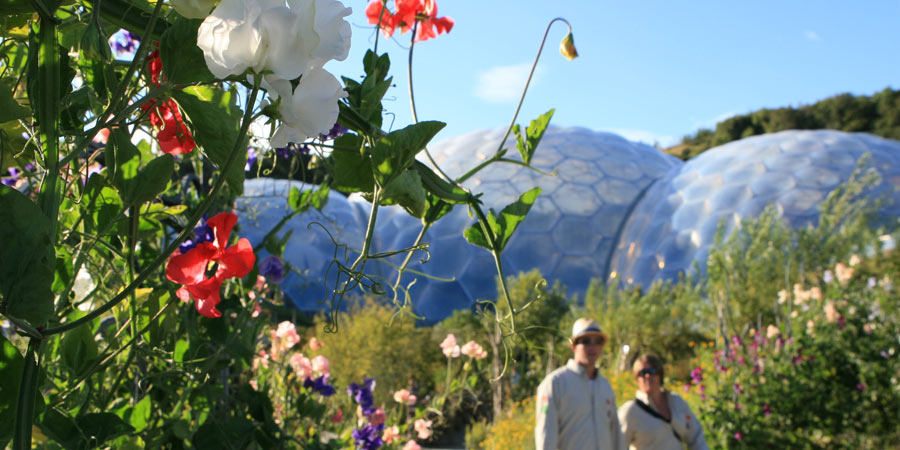 Summer Tours, Eden Project