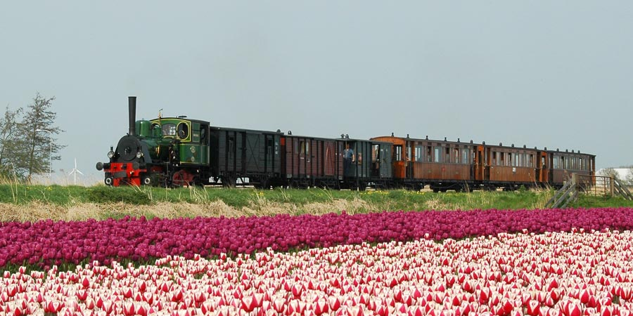 Steam Trains & Tulips of Holland
