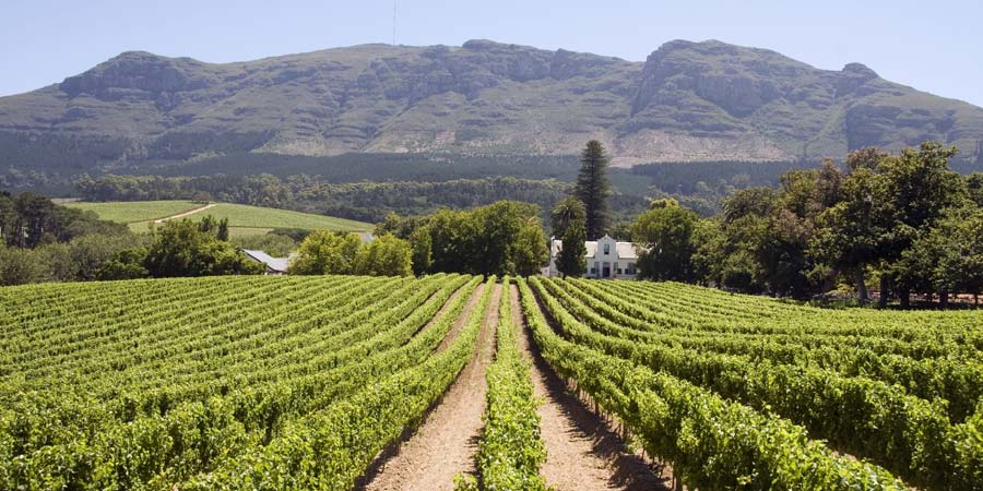 Stellenbosch Vineyard: https://www.greatrail.com/holiday-destinations/africa/south-africa...