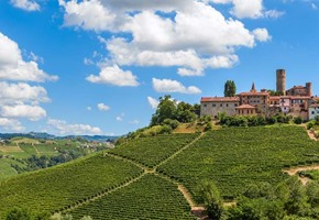 Piedmont: Italy's New Food Capital