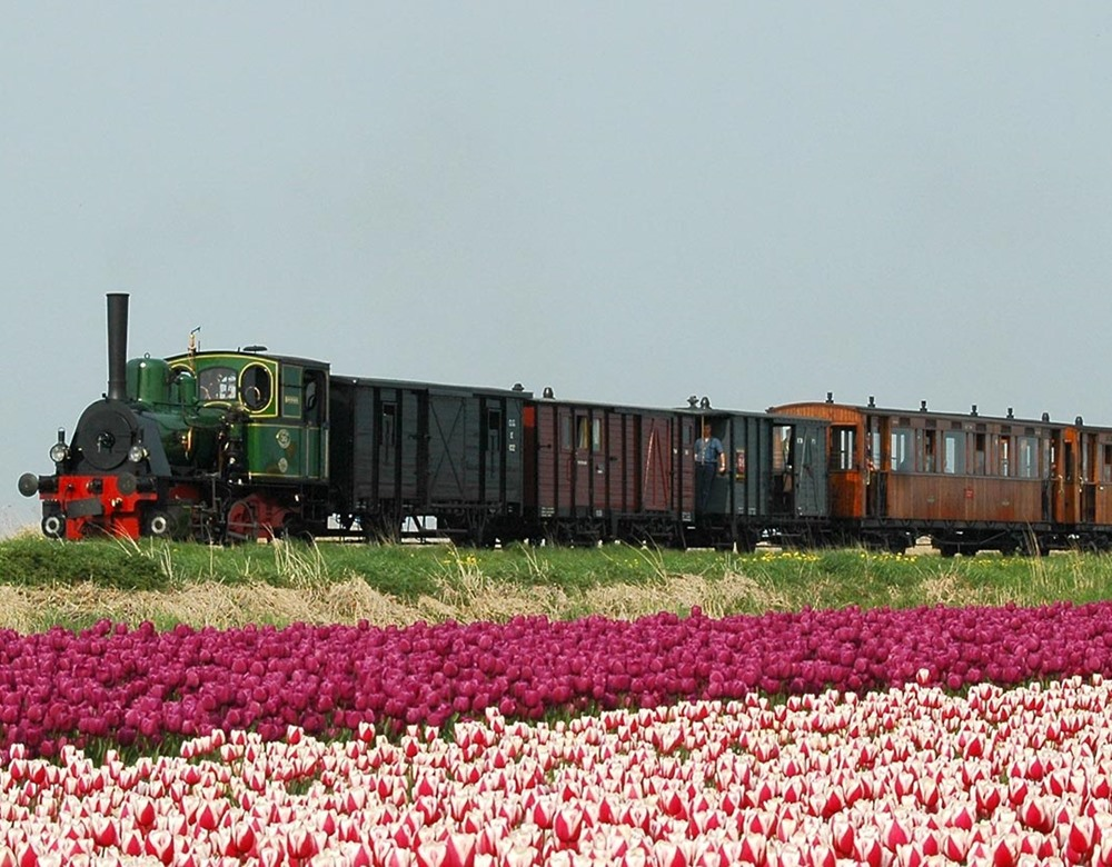 Steam Trains & Tulips of Holland Tour | Great Rail Journeys