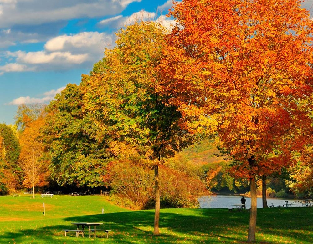 Fall Foliage Tours from New York Boston Canada - TakeTours