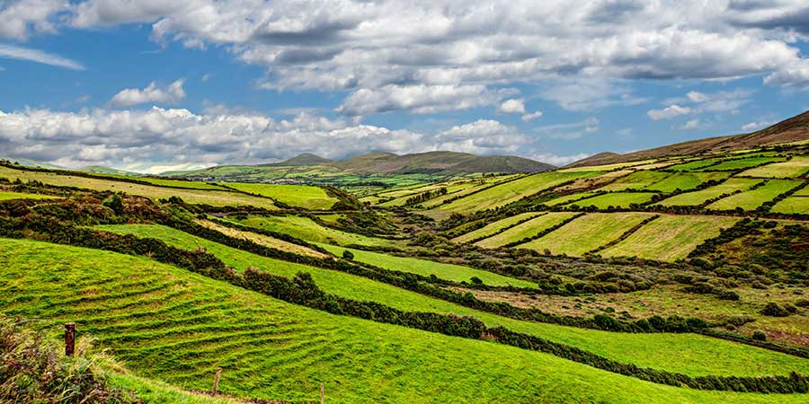 Lush green countryside of Ireland