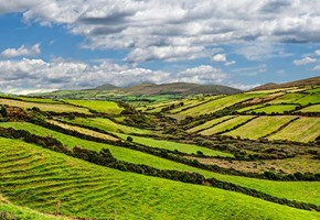 Grean countryside of Ireland