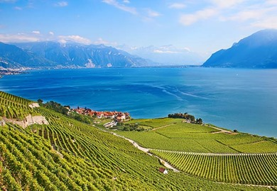 Lake Geneva and Rhine Cruise
